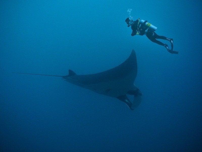 phuket diving