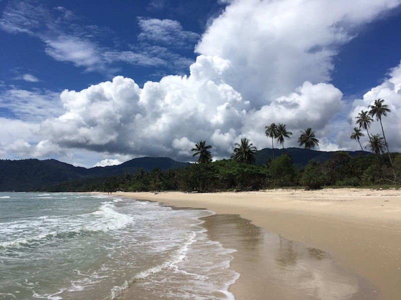 southern-thailand-beach-clouds-coconut-palms