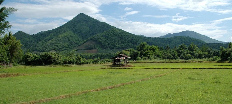 thailand-green-season-rice-field-mountain