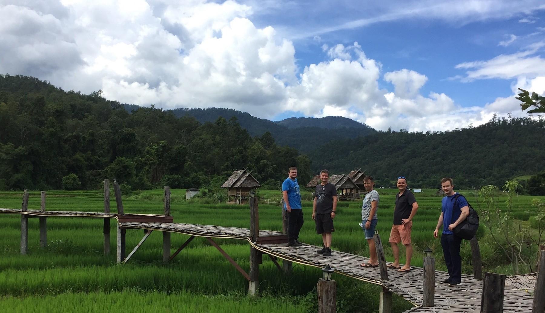bamboo_bridge_rice_paddies_pai