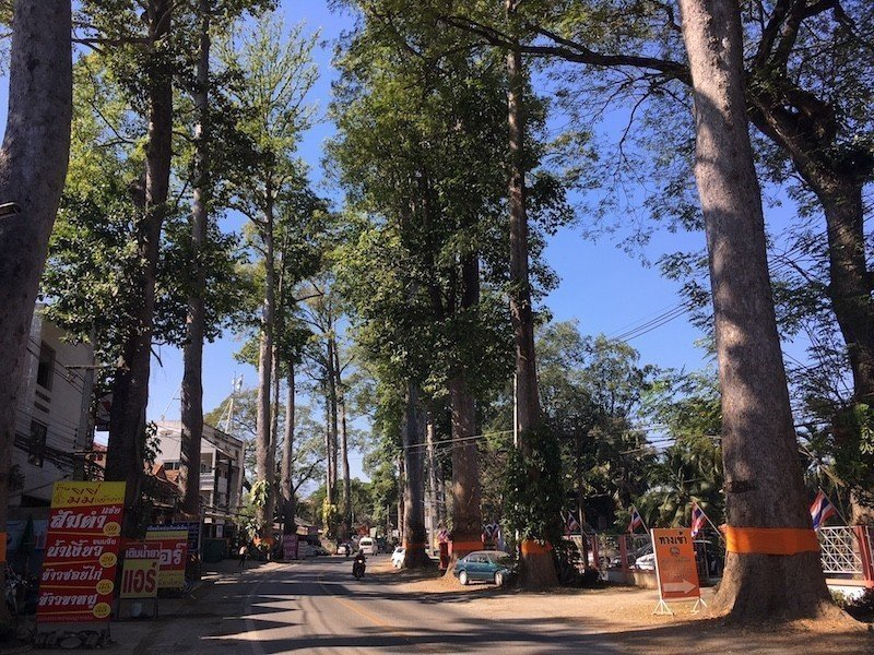 chiang-mai-laamphun-road