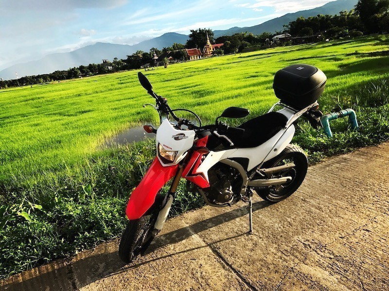 honda-big-bike-rice-field-northern-thailand