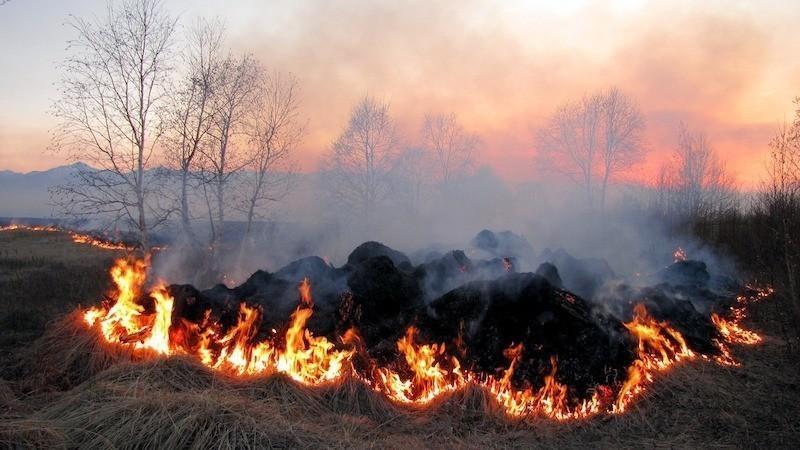 burning-field