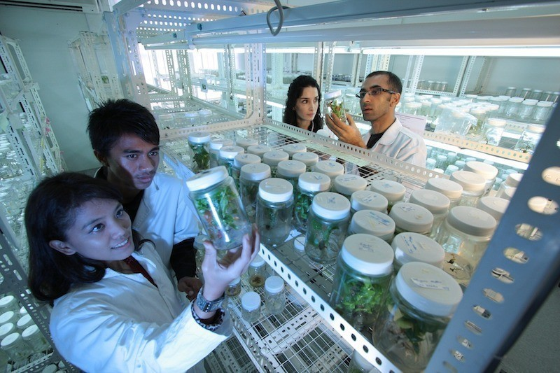 thailand-scientists-research