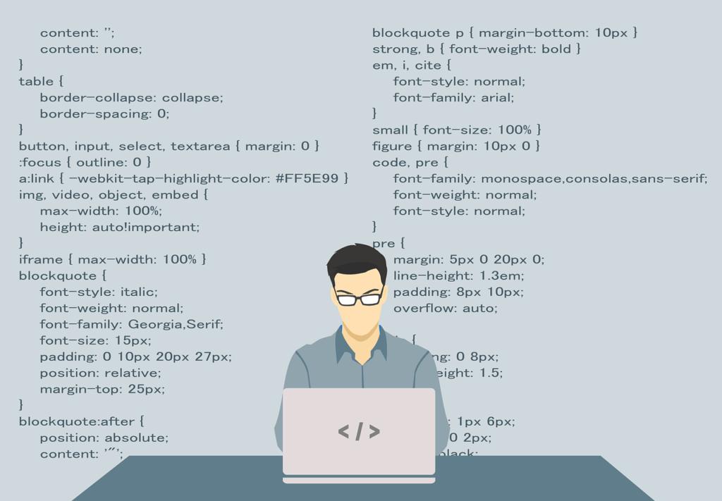 programmer full stack developer